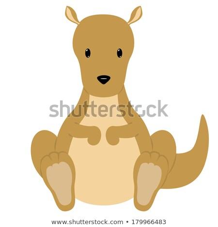 Cartoon kangoeroe vergadering illustratie glimlachend dier Stockfoto © cthoman