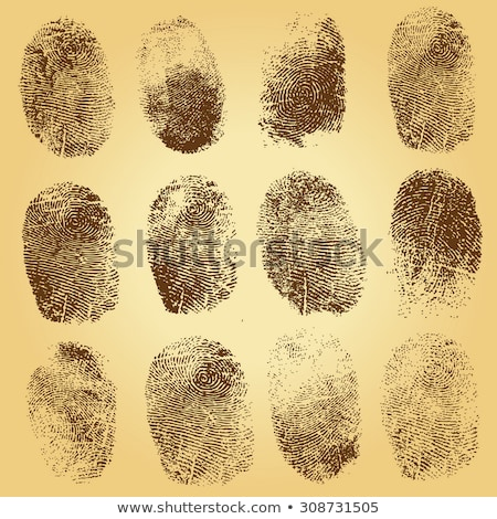 identification fingerprints sketches set vector stock photo © robuart