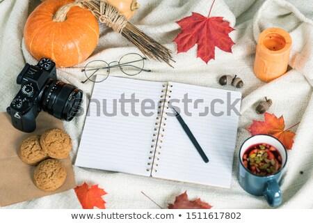 Herbst Ernte Essen trinken pädagogisch andere Stock foto © pressmaster