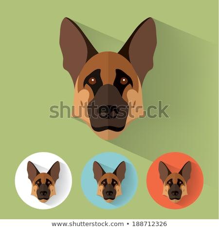 German Shepherd Dog Breed Cartoon Retro Drawing Stock photo © patrimonio