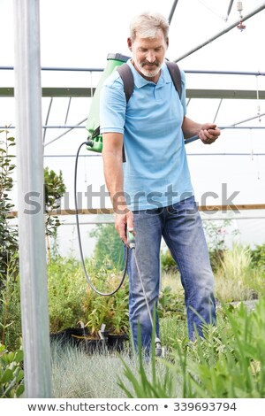 Man Spraying Plants In Polytunnel At Garden Center Stock photo © HighwayStarz