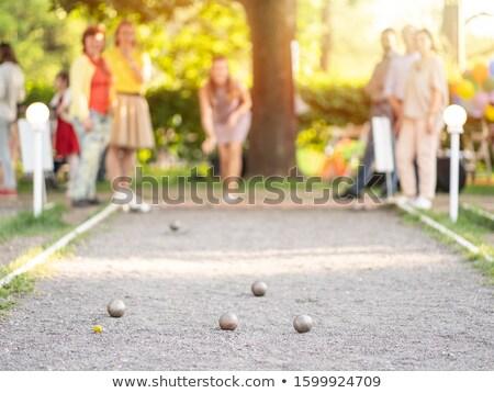 Labda kilátás mögött kerítés kicsi baseball pálya Stock fotó © ca2hill