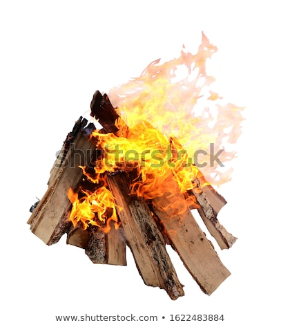 firewood burning stock photo © romvo