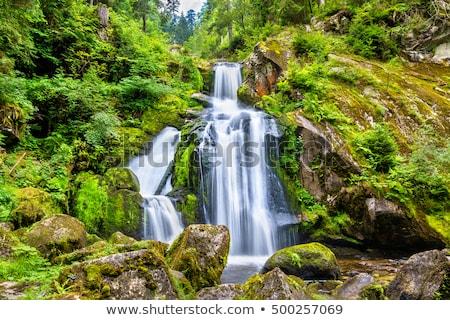 реке · каньон · водопад · воды · пейзаж · гор - Сток-фото © prill