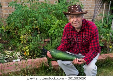 Dojrzały dżentelmen ogród domu starszych klasy Zdjęcia stock © photography33
