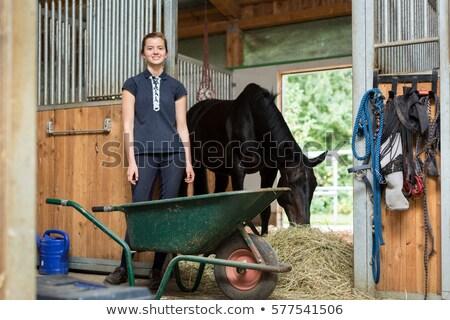 Meisje stabiel paard vrouw schoonheid mooie Stockfoto © photography33