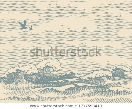 Stock photo: Seagull in the sky
