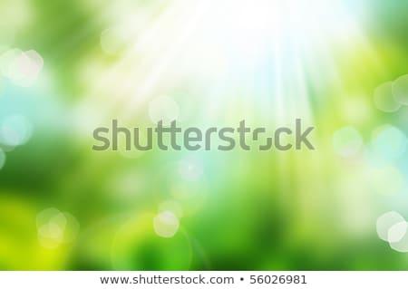 luz · verde · naturalismo · bokeh · luzes · céu · textura - foto stock © gromovataya