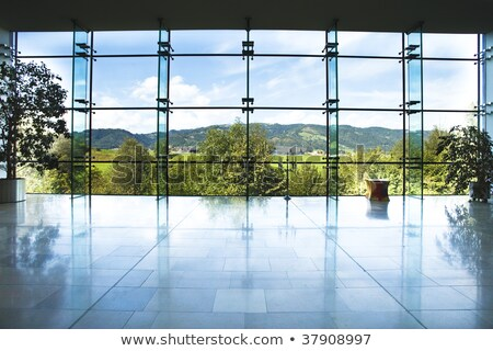 building marble and glass facade Stock photo © sirylok