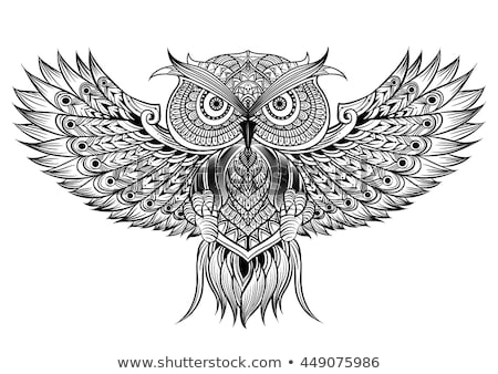 flying cartoon owl with color wings stock photo © loopall