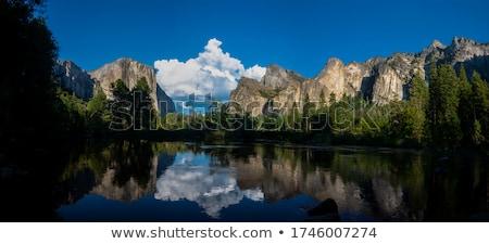 Panorama yosemite panoramisch boom weg Stockfoto © weltreisendertj