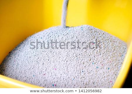 kat · zand · witte · natrium · textuur - stockfoto © smuay