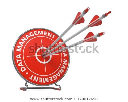 Data Management - Arrows Hit in Red Target. Stock photo © tashatuvango