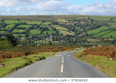 country road to widdecombe in the moor dartmoor england stock photo © latent