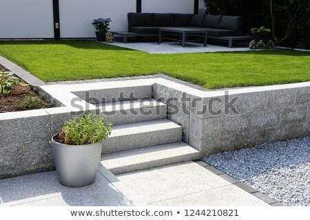 каменные саду лестницы лестница тюльпаны Сток-фото © kimmit