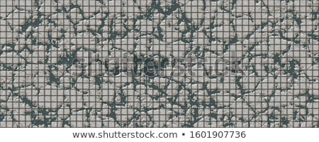 Gray Pavement with a Pattern of Cracked Squares. Stock photo © tashatuvango