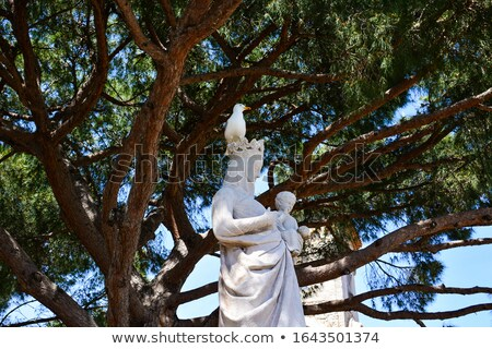 virgin Mary statue with a seagull Stock photo © morrbyte