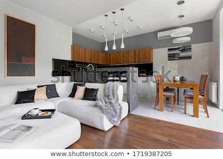 modern apartments stock photo © zhekos