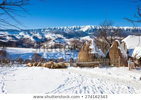 Tipikus tél festői kilátás korpa kastély Stock fotó © pixachi
