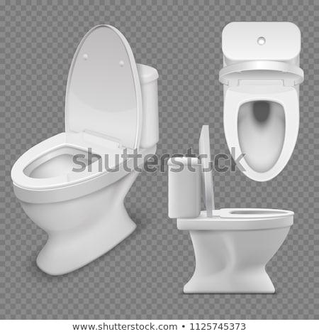 White toilet bowl with open lid Stock photo © pixpack