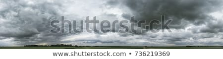 Sky panorama with fantastic clouds Stock photo © Smileus