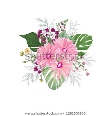 peony flowers bouquet over white background stock photo © tetkoren