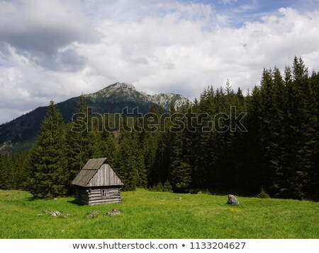 Wooden hut in Chocholowska valley, Tatra Mountains Stock photo © blasbike