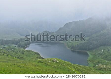 Blue water of lake in Biogradska mountain forests stock photo © Steffus