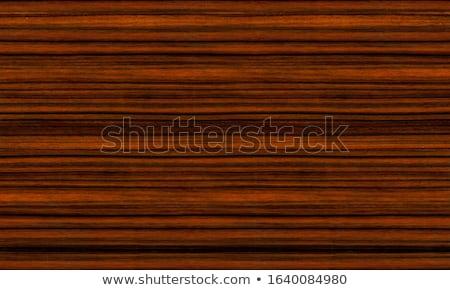 Textura árbol madera pared diseno vintage Foto stock © FOTOYOU