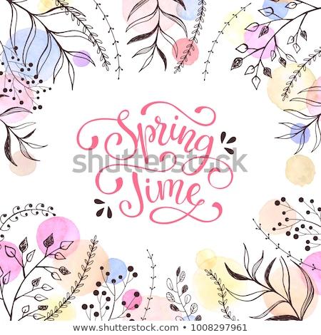 Bahar kelime suluboya grunge vektör Stok fotoğraf © Sonya_illustrations