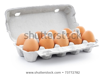 Ten chicken eggs in cardboard box Stock photo © stevanovicigor