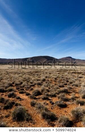 Krater yan dağ mavi orman doğa Stok fotoğraf © markdescande
