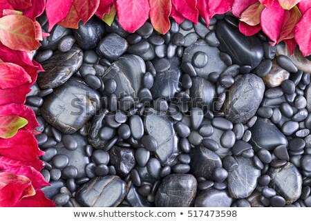 black rocks left and top bordered by red leaves stock photo © ozgur