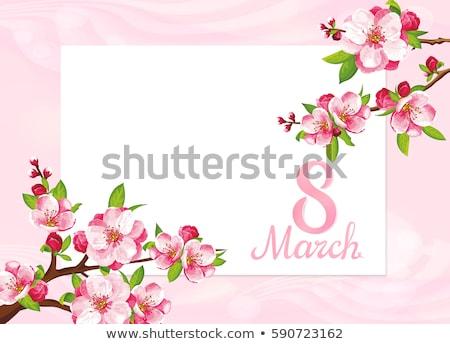 Saudação cartões conjunto sakura eps 10 Foto stock © beholdereye