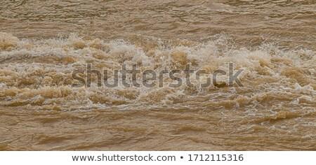 Sáros víztükör víz absztrakt tó tavacska Stock fotó © Digifoodstock
