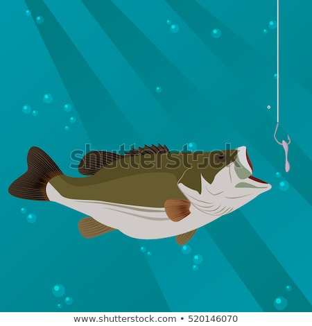Fish takes the bait to lure Stock photo © alphaspirit