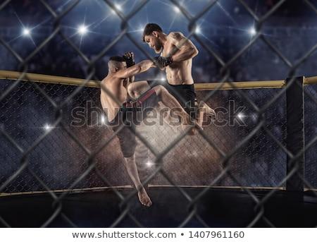 ケージ 1泊 3dのレンダリング 戦う アリーナ 黒 ストックフォト © albund