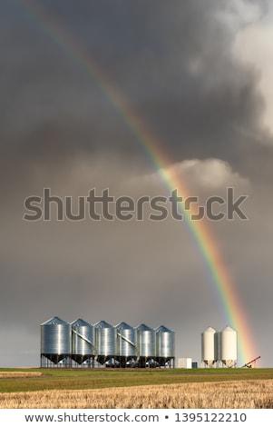 szivárvány · Saskatchewan · mező · utazás · vihar · szín - stock fotó © pictureguy