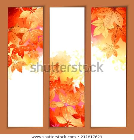 Autumn Foliage Fall Header November Wood Stock photo © limbi007