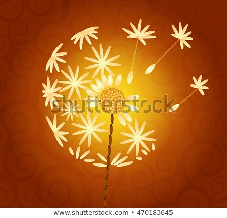 retro · kártya · pitypang · üdvözlőlap · virágok · szoba - stock fotó © olena