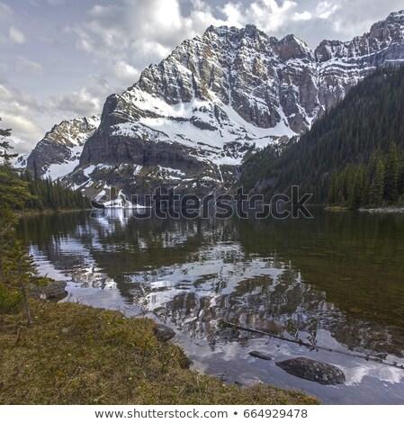 Twin Lakes in scenic Alberta Stock photo © pictureguy