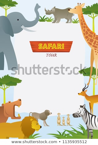 野生動物 実例 自然 背景 芸術 ストックフォト © bluering