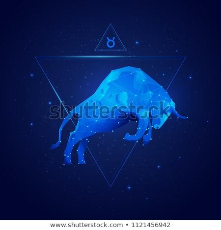 Zodiak znaki byka horoskop astrologia Zdjęcia stock © Krisdog