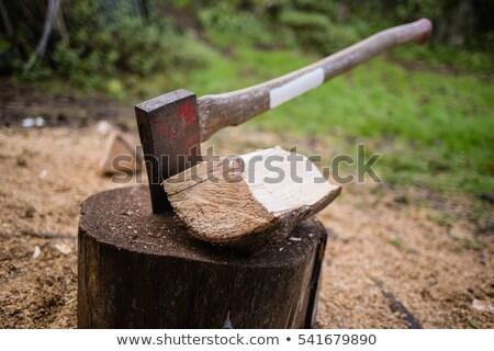 человека лесоруб Swing топор иллюстрация бородатый Сток-фото © lenm