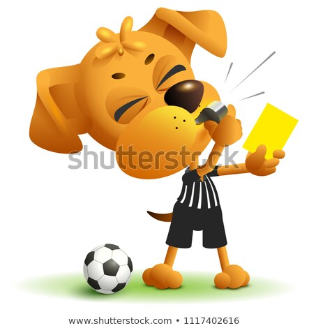 Referee dog shows yellow card. Violation of rules when playing soccer Stock photo © orensila