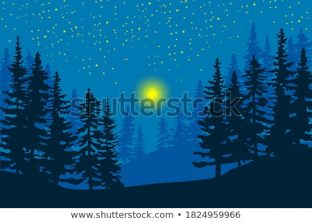 Cena noturna silhueta mata ilustração lua fundo Foto stock © bluering