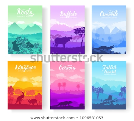Australian animals in the natural habitat on brochure. Colorful flyers with Wildlife in nature. Temp Stock photo © Linetale