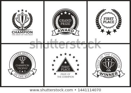 Prêmio campeão monocromático conjunto prêmio Foto stock © robuart