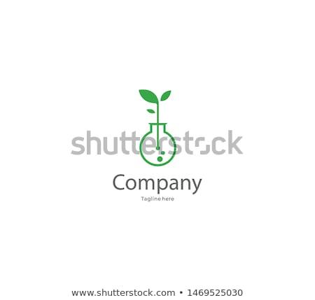 Reageerbuis plant illustratie bodem experiment natuur Stockfoto © lenm