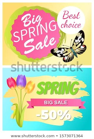 Tavasz vásár árengedmény legjobb ajánlat promóció Stock fotó © robuart